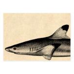 Negro del ejemplo del tiburón del filón del vintag plantillas de tarjeta de negocio