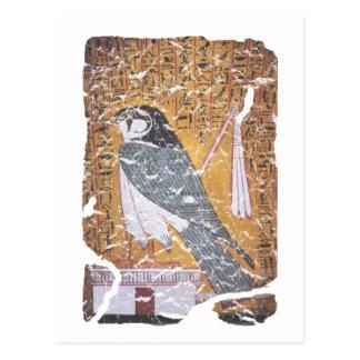 Negro del halcón tarjeta postal