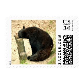 Negro del oso (AL, LA, nanómetro, WV) Estampillas