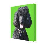 Negro del perro de caniche estándar, impresión de  impresión en lona
