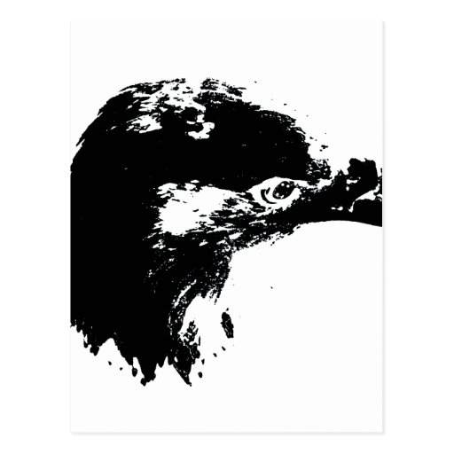 negro del recorte del águila calva postal