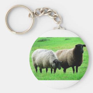 negro-dirigir-ovejas llavero redondo tipo pin