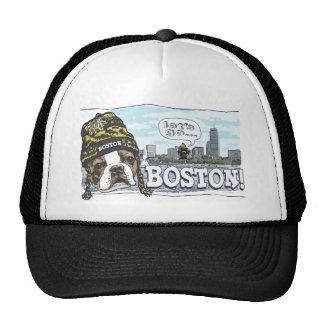 Negro impresionante de la fan de Boston y casquill Gorros Bordados