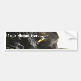 Negro peludo de las barbas de los ojos de gatos etiqueta de parachoque