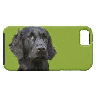 Negro revestido plano del perro del perro iPhone 5 coberturas