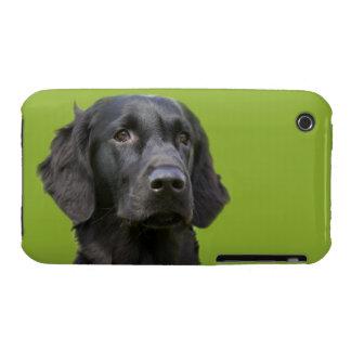 Negro revestido plano del perro del perro Case-Mate iPhone 3 protectores