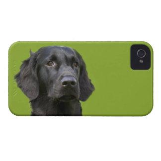 Negro revestido plano del perro del perro Case-Mate iPhone 4 cárcasa