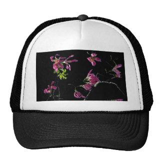 negro rosado de las ramas de árbol de orquídea