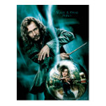 Negro y Bellatrix Lestrange de Sirius Postal