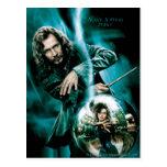Negro y Bellatrix Lestrange de Sirius Tarjetas Postales