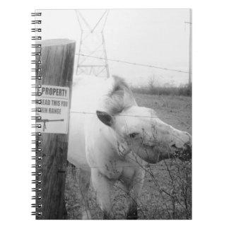 Negro y blanco del caballo de la propiedad privada cuaderno