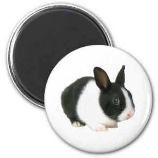 Negro y blanco del conejo de conejito imán de nevera