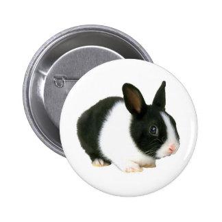 Negro y blanco del conejo de conejito pins