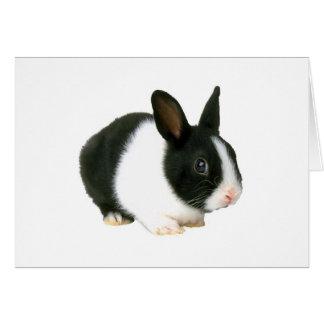 Negro y blanco del conejo de conejito tarjeta de felicitación