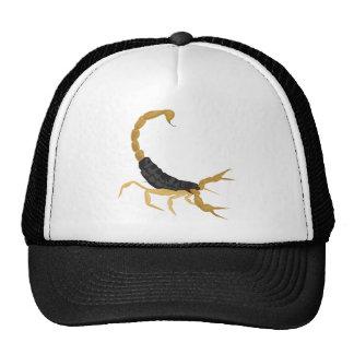 Negro y escorpión del oro gorras