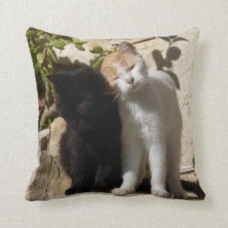 Negro y gatitos lindos blancos anaranjados cojín