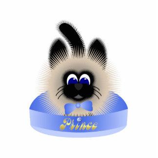 Negro y gato de Brown con el lazo azul claro en un Esculturas Fotograficas