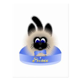 Negro y gato de Brown con el lazo azul claro en un Postal