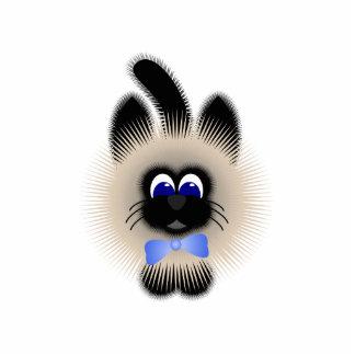 Negro y gato de Brown con el lazo azul claro Escultura Fotográfica