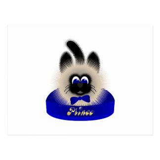 Negro y gato de Brown con el lazo azul marino en u Tarjeta Postal