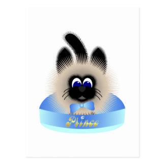 Negro y gato de Brown con el lazo en colores paste Tarjetas Postales