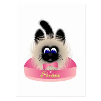 Negro y gato de Brown con el lazo rosado en una ca Postal