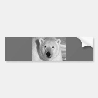 Negro y oso polar de la pizca pegatina para auto
