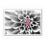 Negro y postal blanca/rosada de la cinta
