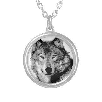 Negro y White Wolf Collar Plateado