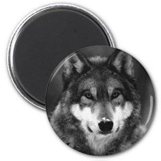 Negro y White Wolf Imán Redondo 5 Cm