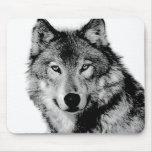 Negro y White Wolf Tapetes De Ratón