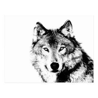 Negro y White Wolf Tarjetas Postales