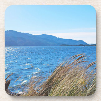 Nehalem Bay State Park - Bay Beach Drink Coasters