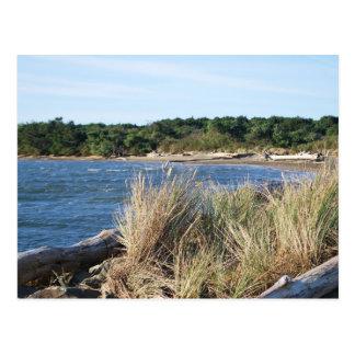 Nehalem Bay State Park Postcard