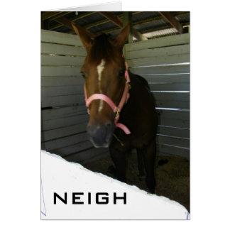 NEIGH-SAY IT ISN'T SO (BIRTHDAY) CARD