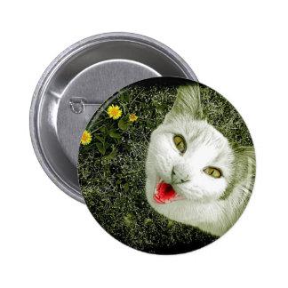Neighbor Cat Pinback Buttons
