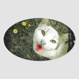 Neighbor Cat Oval Sticker