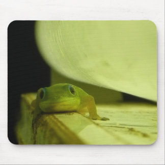 Neighborhood Gecko in the Light Mouse Pad