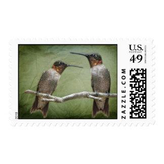 Neighborly Hummingbirds Postage Stamp