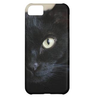 NEKOYASHIKI - A house full of cats iPhone 5C Cover