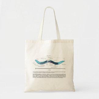 Nematode Roundworm Caenorhabditis Elegans Diagram Canvas Bags