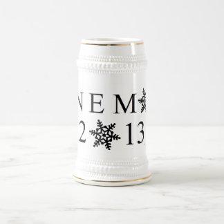 NEMO 2013 Stein