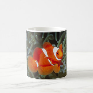 nemo fish in the deep blue sea cute for you and me coffee mug
