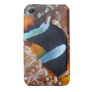 Nemo iPod Touch case