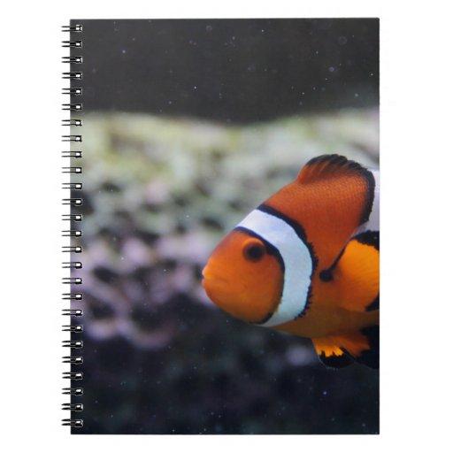 Nemo tiene gusto del primo cuaderno