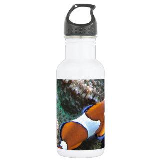 Nemo Water Bottle