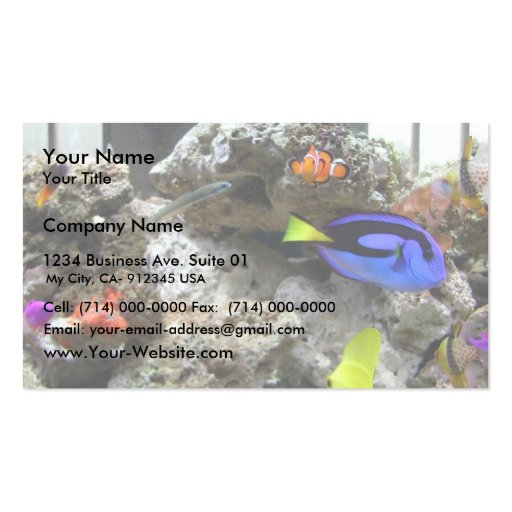 Nemo With His Gang Business Card