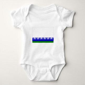 Nenets Autonomous Okrug Flag Tee Shirt
