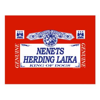 Nenets Herding Laika Postcard
