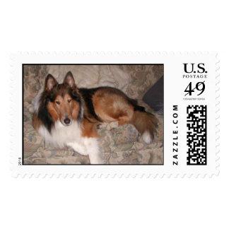 NEOCR Winston Stamp
